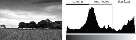 Histograma - trucos de fotografia